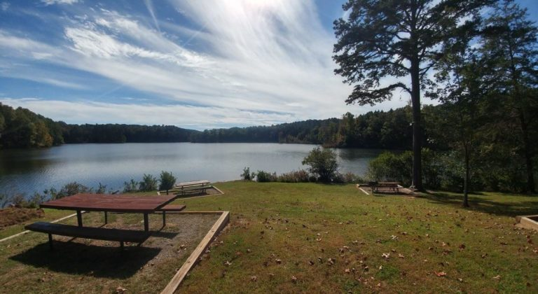 Lake Russell Picnic Table